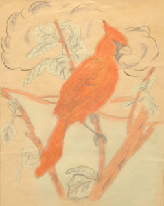 1962 Original Art of a Cardinal by wildlife artist Danny O'Driscoll