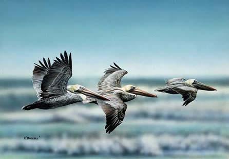 Beach Scene an original acrylic painting by Wildlife Artist Danny O'Driscoll
