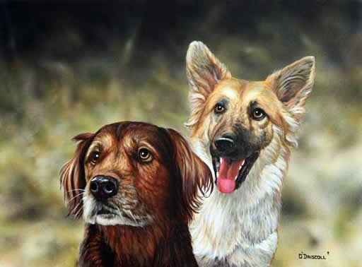 An acrylic painting of Two Southern Dogs by wildlife artist Danny O'Driscoll