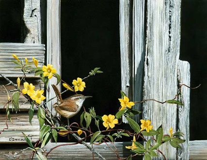Southern Living an original acrylic painting by wildlife artist Danny O'Driscoll